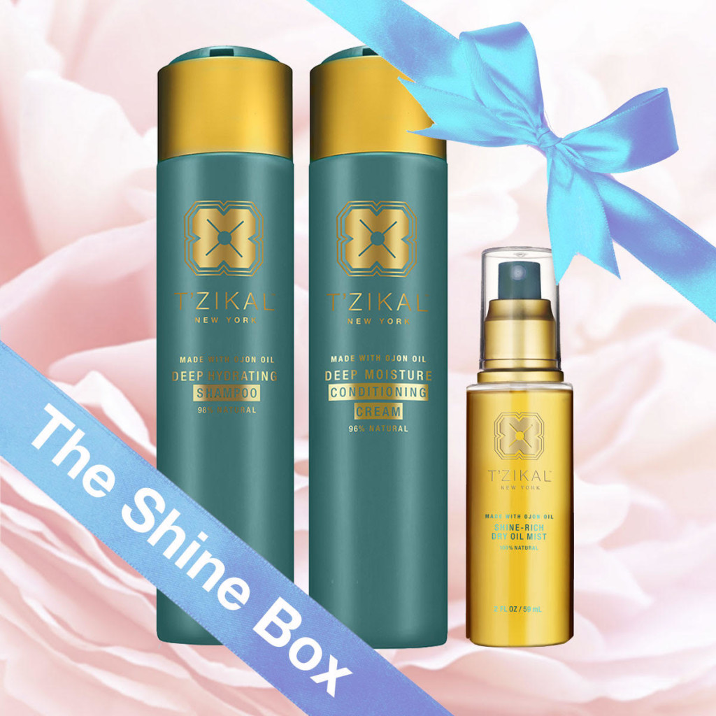 Mother's Day Shine Kit
